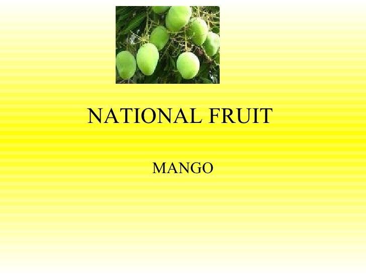 NATIONAL FRUIT  MANGO