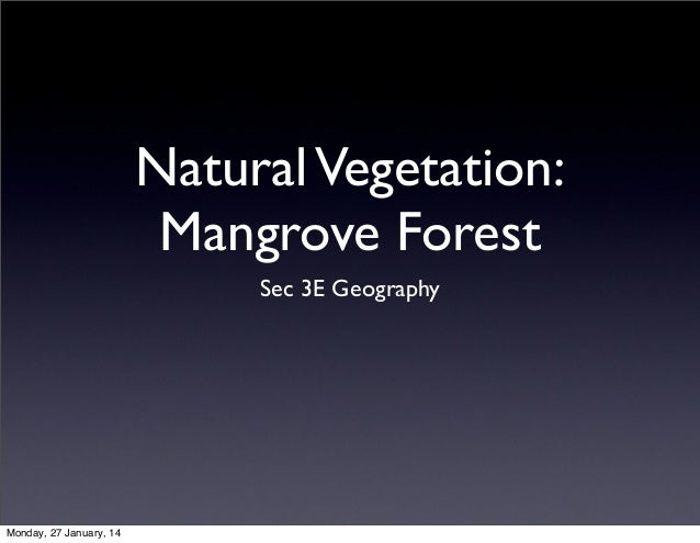 Natural Vegetation: Mangrove Forest Sec 3E Geography  Monday, 27 January, 14