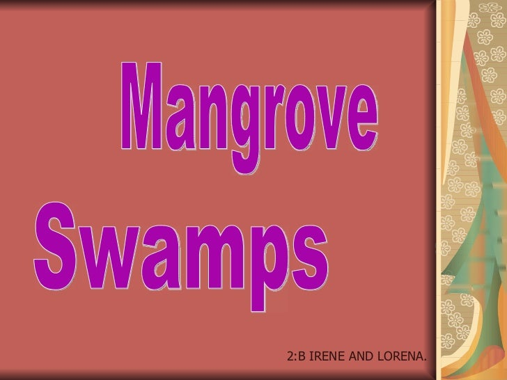 Mangroves by Irene and Lorena