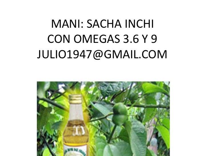 Mani amazonico medicinal, omegas 3,6 y 9