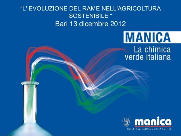Manica fmv-2012
