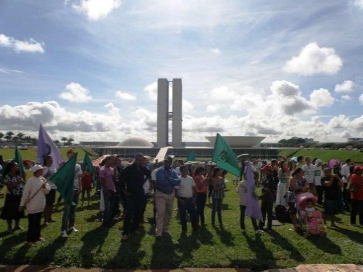 Manifestação contra as mudanças no Código Florestal
