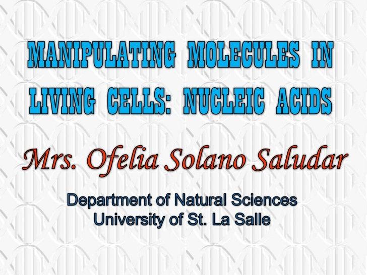 Manipulating nucleic acids