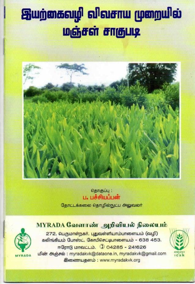 Harvesting turmeric the organic way_MYRADA Krishi Vigyan Kendra_2014_Tamil