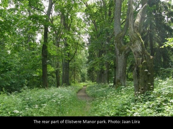 The rear part of Elistvere Manor park. Photo: Jaan Liira