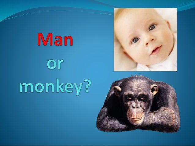 Man or monkey_a