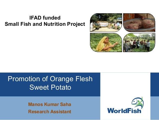 IFAD fundedSmall Fish and Nutrition ProjectManos Kumar SahaResearch AssistantPromotion of Orange FleshSweet Potato