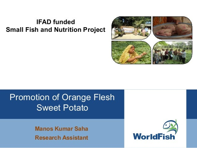 IFAD funded Small Fish and Nutrition Project - Promotion of Orange Flesh Sweet Potato