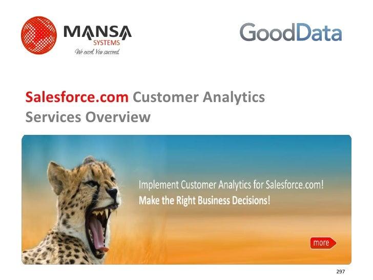Salesforce.com Customer Analytics Services Overview                                         297