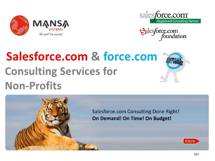 Salesforce.com & force.com Consulting Services for Non-Profits                                  297