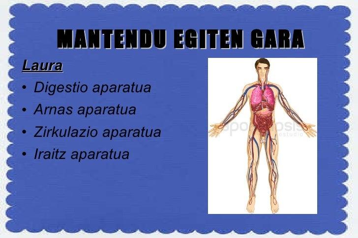 MANTENDU EGITEN GARA <ul><li>Laura </li></ul><ul><li>Digestio aparatua </li></ul><ul><li>Arnas aparatua </li></ul><ul><li>...