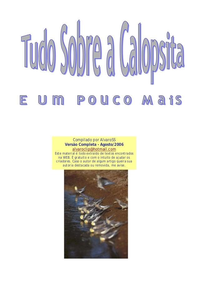 Compilado por AlvaroSS Versão Completa - Agosto/2006 alvaroclip@hotmail.com Este material é todo extraído de textos encont...