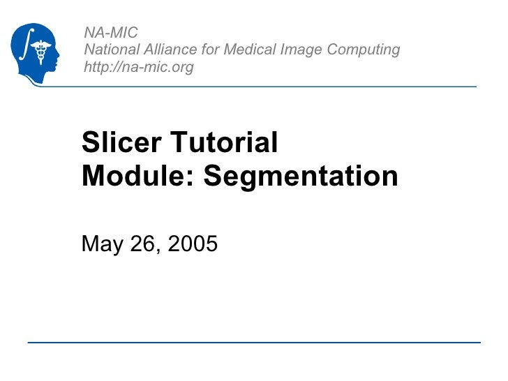 Slicer Tutorial Module: Segmentation May 26, 2005