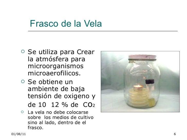 Manual laboratorio microbiologia