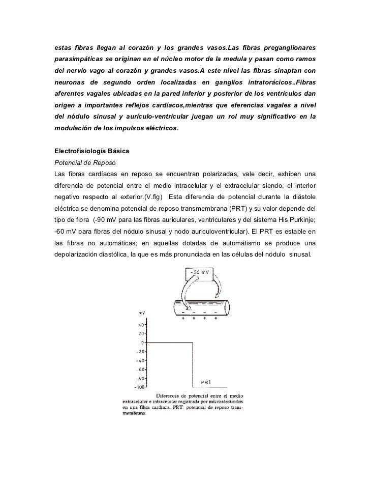 Tobacco essay