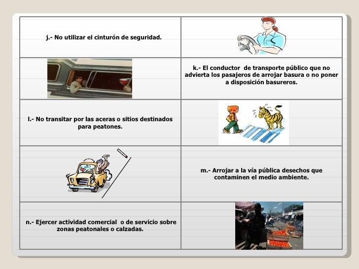 De seguimiento i llevar animales dom 233 sticos en los asientos