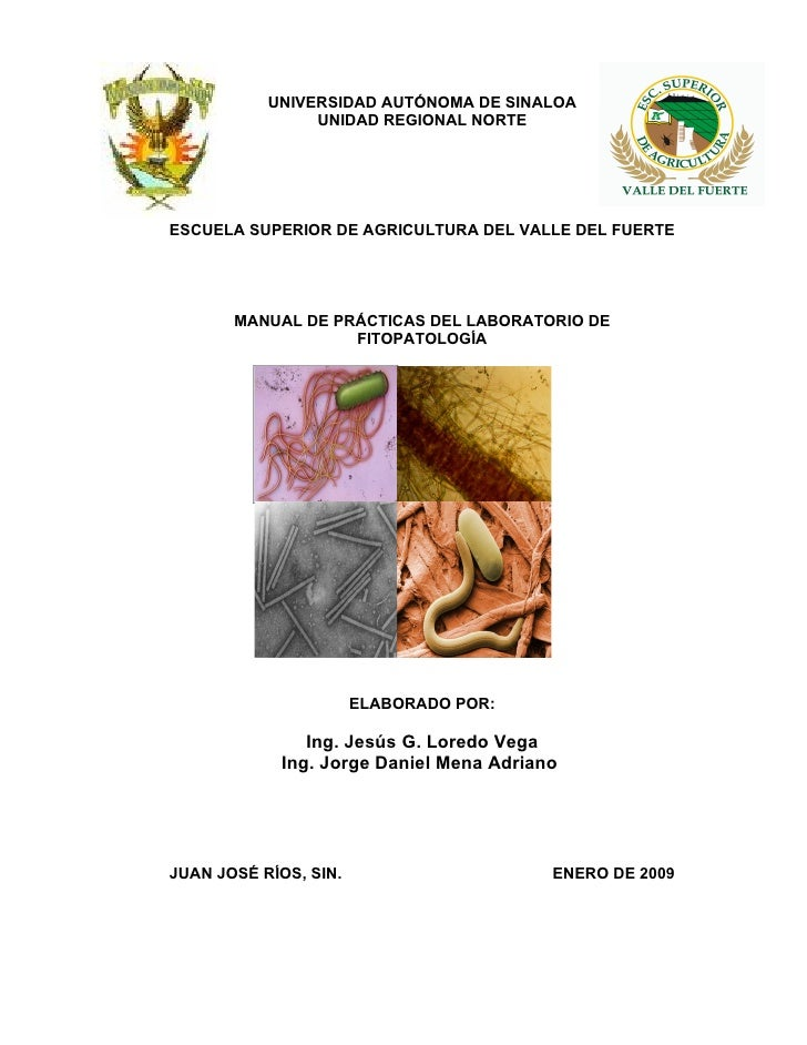UNIVERSIDAD AUTÓNOMA DE SINALOA                 UNIDAD REGIONAL NORTE     ESCUELA SUPERIOR DE AGRICULTURA DEL VALLE DEL FU...