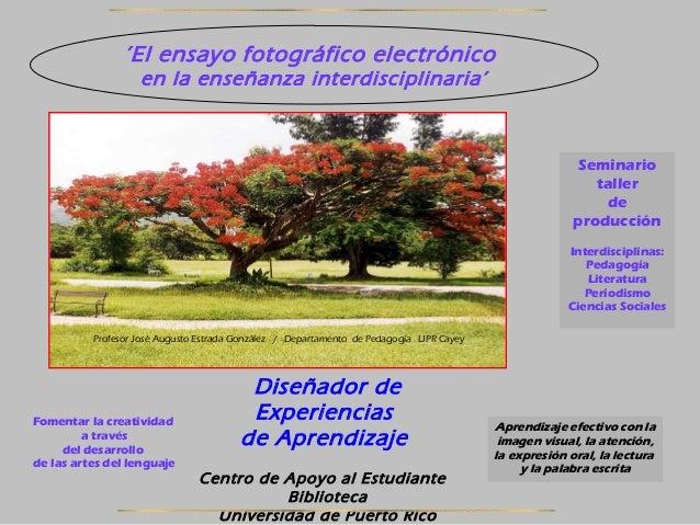Manual fotoensayo electrónico seminario 2013 zpd