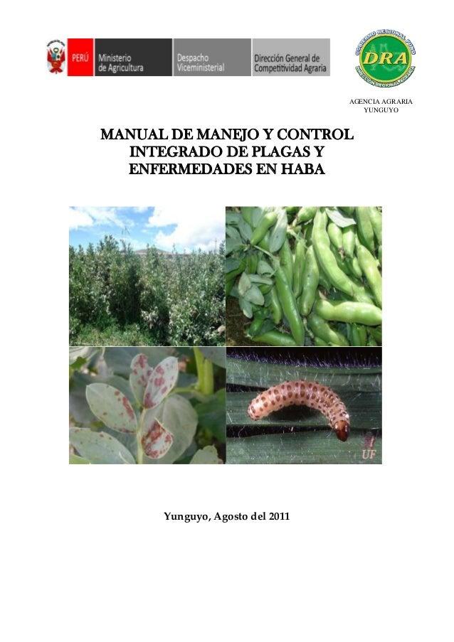 DIRECCION REGIONAL MANUAL DE MANEJO Y CONTROL INTEGRADO DE PLAGAS Y ENFERMEDADES EN HABA Yunguyo, Agosto del 2011 AGENCIA ...