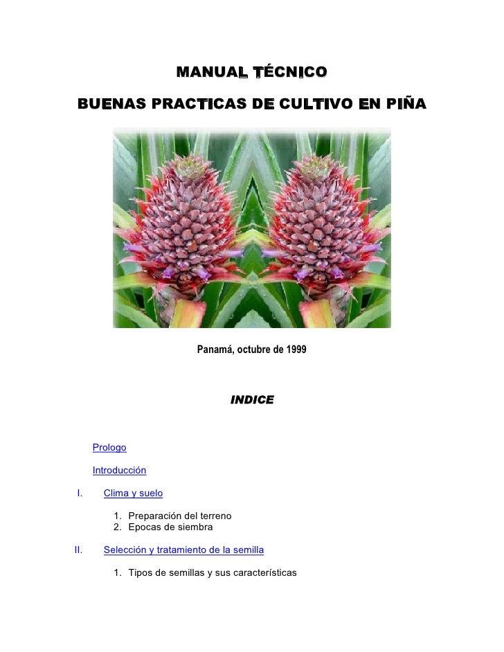 MANUAL TÉCNICOBUENAS PRACTICAS DE CULTIVO EN PIÑA                             Panamá, octubre de 1999                     ...