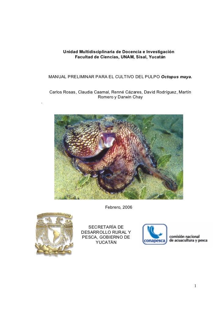 Unidad Multidisciplinaria de Docencia e Investigación               Facultad de Ciencias, UNAM, Sisal, Yucatán    MANUAL P...