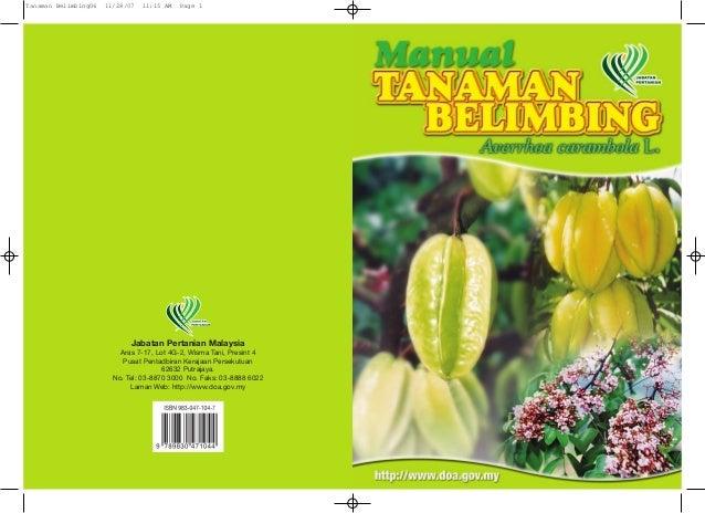 Manual Tanaman Belimbing