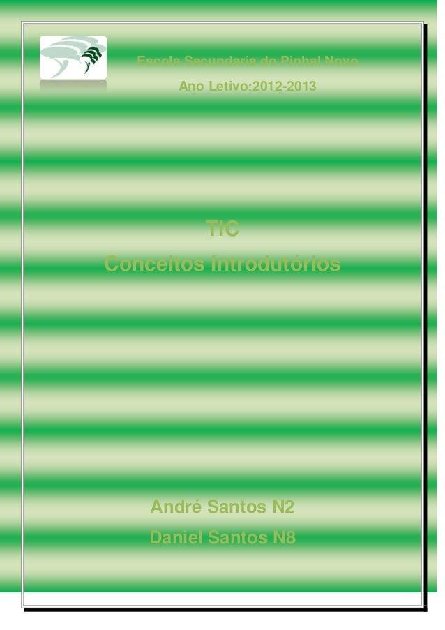 Escola Secundaria do Pinhal Novo Ano Letivo:2012-2013 TIC Conceitos Introdutórios André Santos N2 Daniel Santos N8