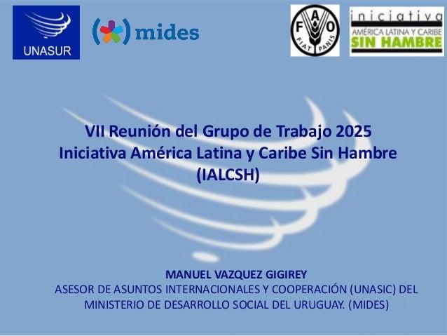 VII Reunión del Grupo de Trabajo 2025 Iniciativa América Latina y Caribe Sin Hambre (IALCSH)  MANUEL VAZQUEZ GIGIREY ASESO...