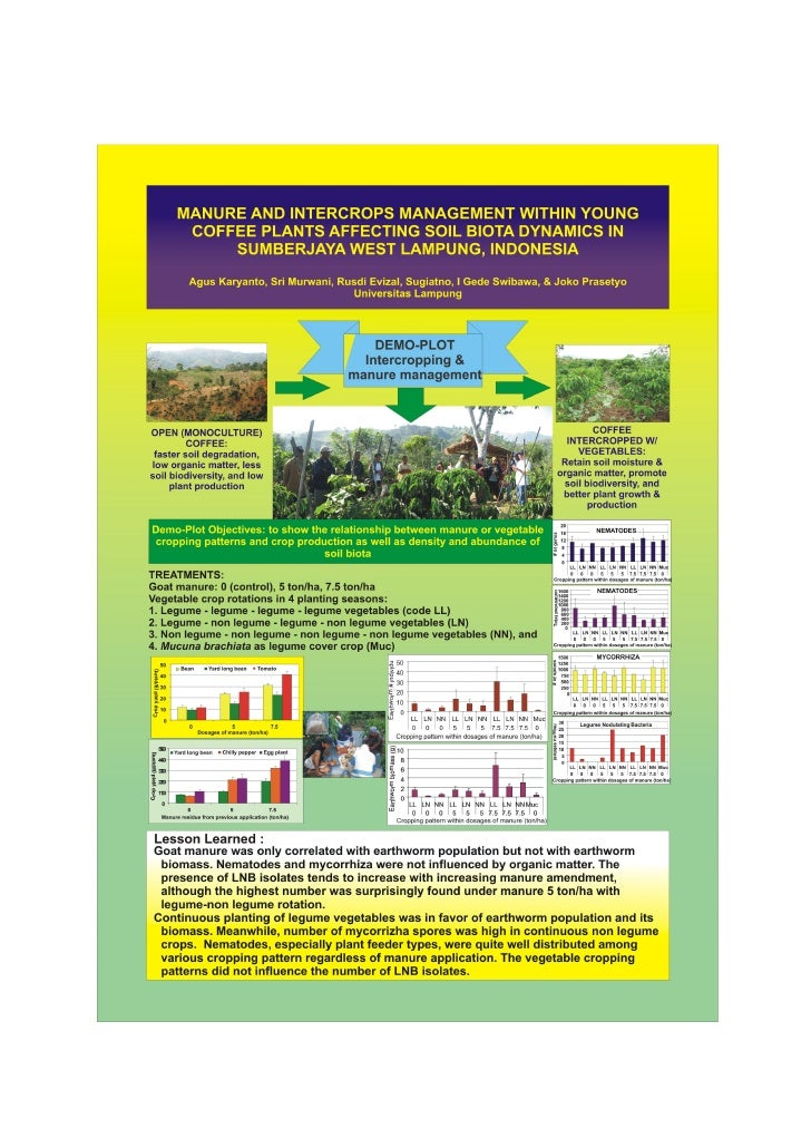 Manure and intercrops management within young coffee plants affecting soil biota dynamics in sumberjaya, west lampung, ind...