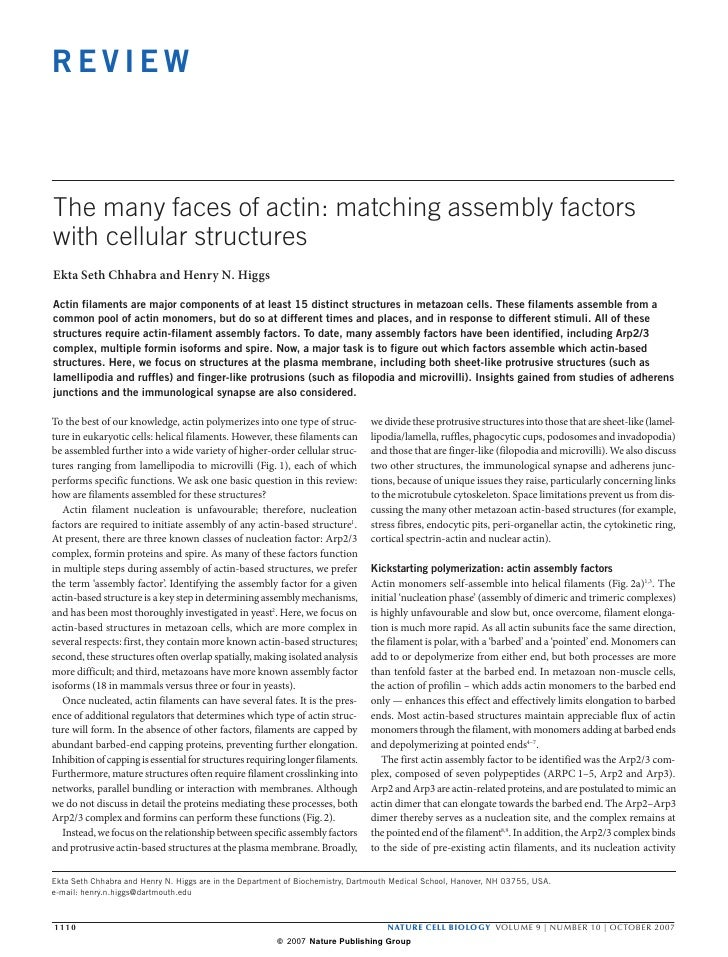 REVIEW    The many faces of actin: matching assembly factors with cellular structures Ekta Seth Chhabra and Henry N. Higgs...