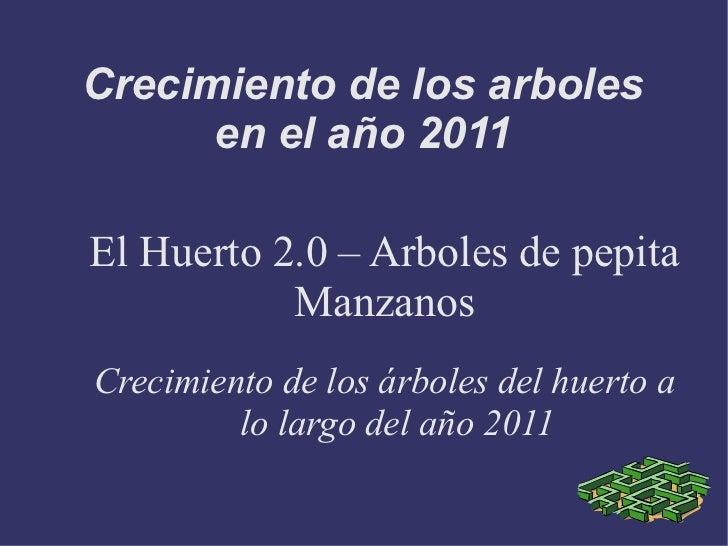 Crecimiento de los arboles      en el año 2011El Huerto 2.0 – Arboles de pepita           ManzanosCrecimiento de los árbol...