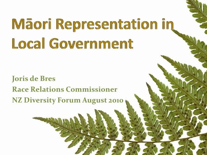 Maori representation in local government v1