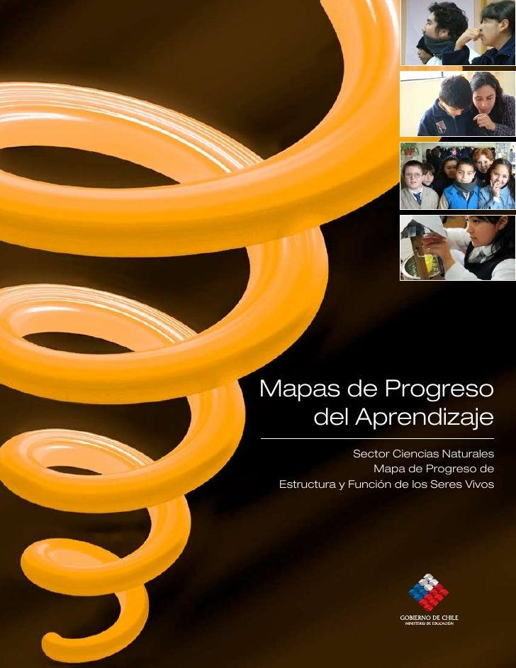 Mapas de Progreso    del Aprendizaje                Sector Ciencias Naturales                   Mapa de Progreso de  Estru...