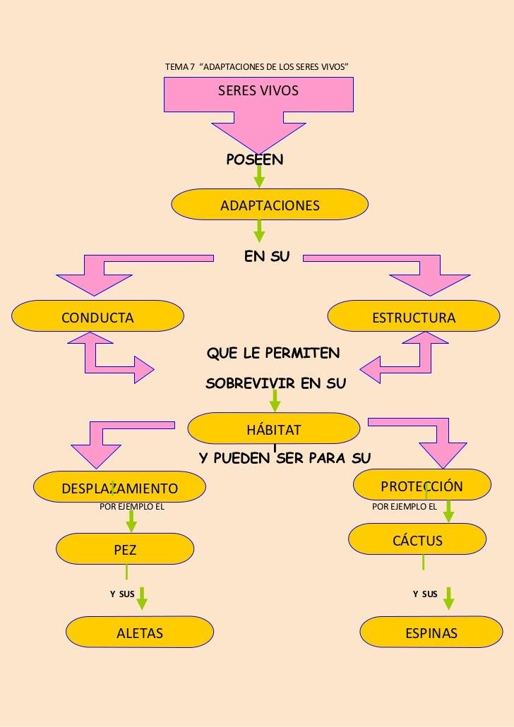 """TEMA 7 """"ADAPTACIONES DE LOS SERES VIVOS""""                                SERES VIVOS                                  POSEE..."""