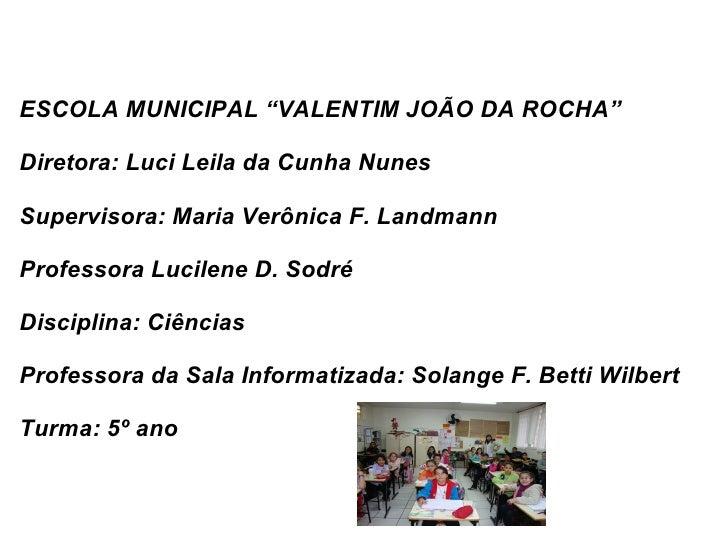 """ESCOLA MUNICIPAL """"VALENTIM JOÃO DA ROCHA"""" Diretora: Luci Leila da Cunha Nunes Supervisora: Maria Verônica F. Landmann Prof..."""