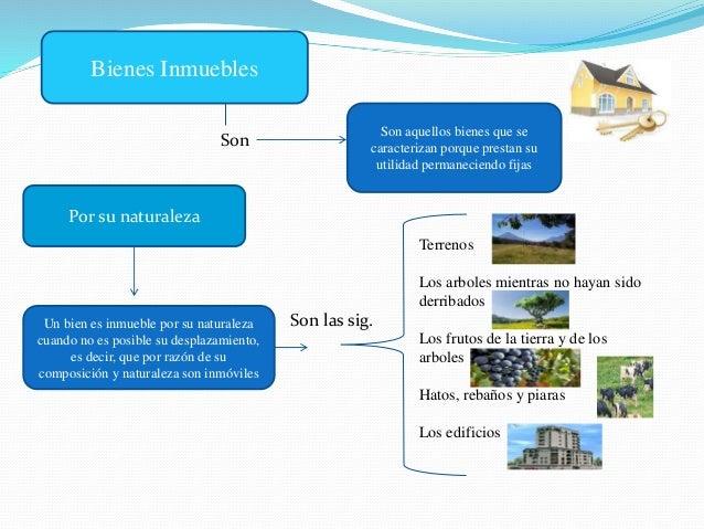 Mapa conceptual bienes muebles e inmuebles for Bienes de muebles e inmuebles