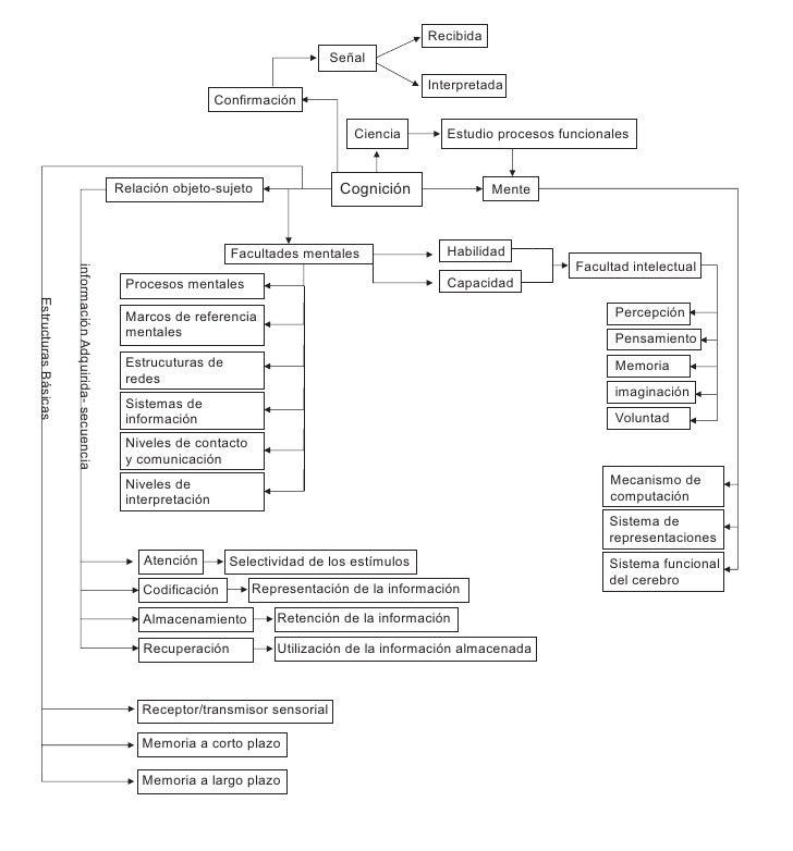 Mapa conceptual cognicion