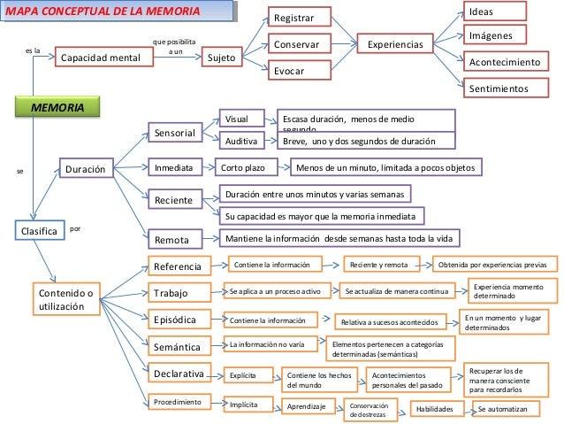 lenguaje como proceso psicologico: