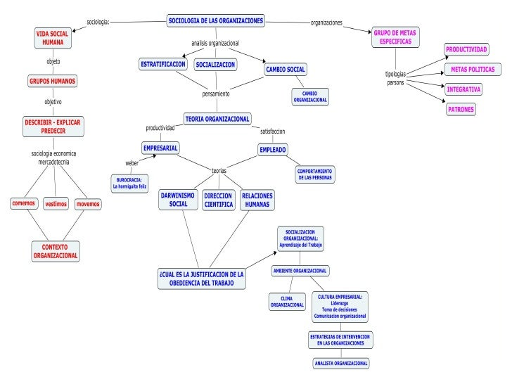 Mapa conceptual naturaleza del fenomeno organizacional
