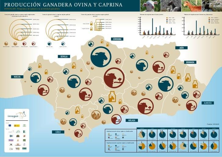 Mapa producciones ovinos