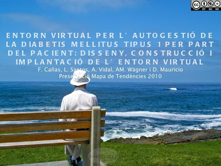 ENTORN VIRTUAL PER L'AUTOGESTIÓ DE LA DIABETIS MELLITUS TIPUS 1 PER PART DEL PACIENT: DISSENY, CONSTRUCCIÓ I IMPLANTACIÓ D...