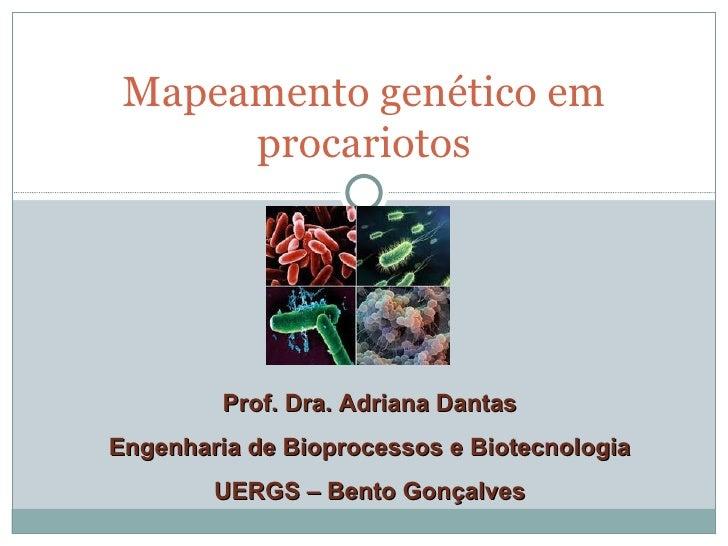 Mapeamento genético em      procariotos         Prof. Dra. Adriana DantasEngenharia de Bioprocessos e Biotecnologia       ...