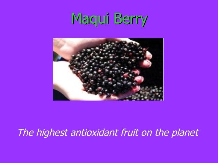 <ul>Maqui Berry </ul><ul>The highest antioxidant fruit on the planet </ul>