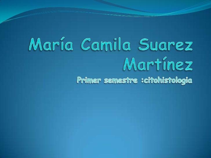 María Camila Suarez Martínez <br />Primer semestre :citohistologia<br />