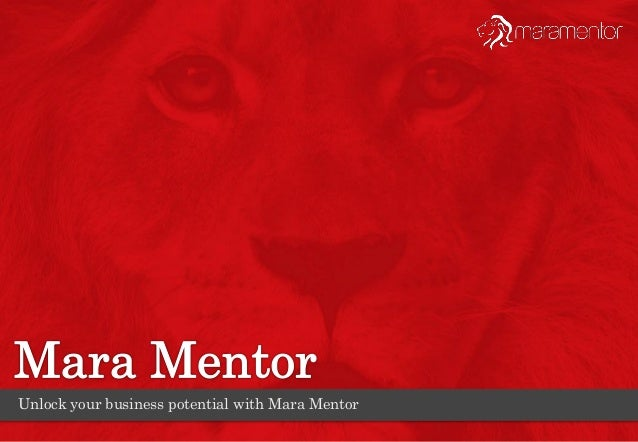 Unlock your business potential with Mara Mentor