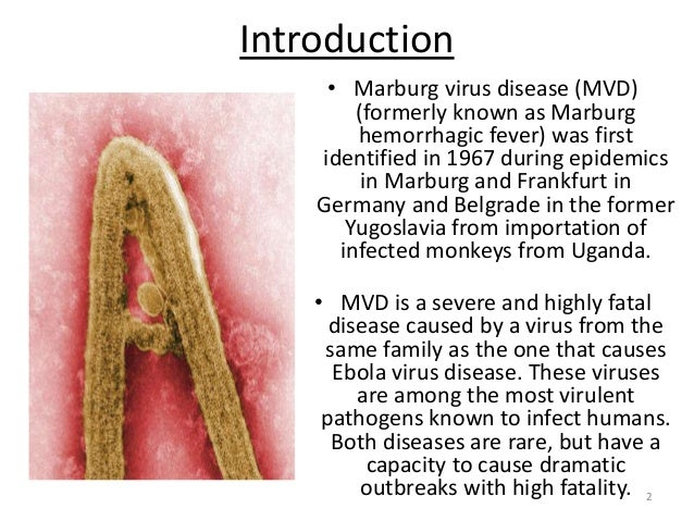 the history diagnosis and treatment of ebola hemorrhagic fever Is one of numerous viral hemorrhagic fevers ebola the 2014-2015 ebola outbreak is the largest ebola outbreak in history symptoms of ebola include: fever.