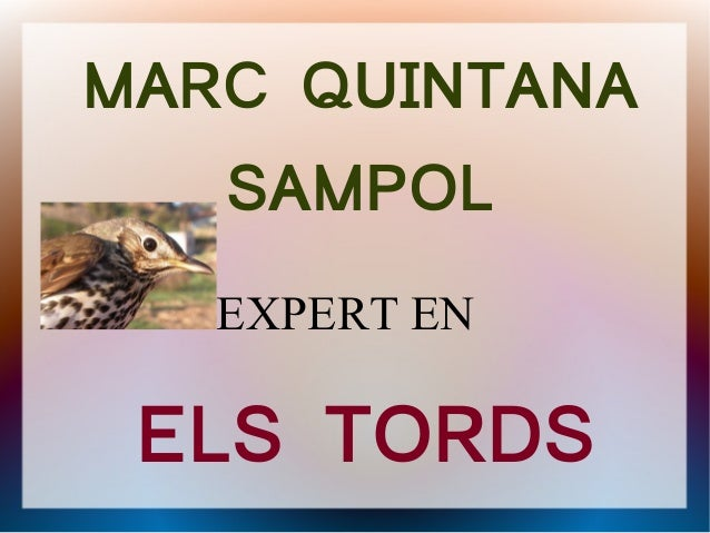 MARC QUINTANA   SAMPOL   EXPERT EN ELS TORDS