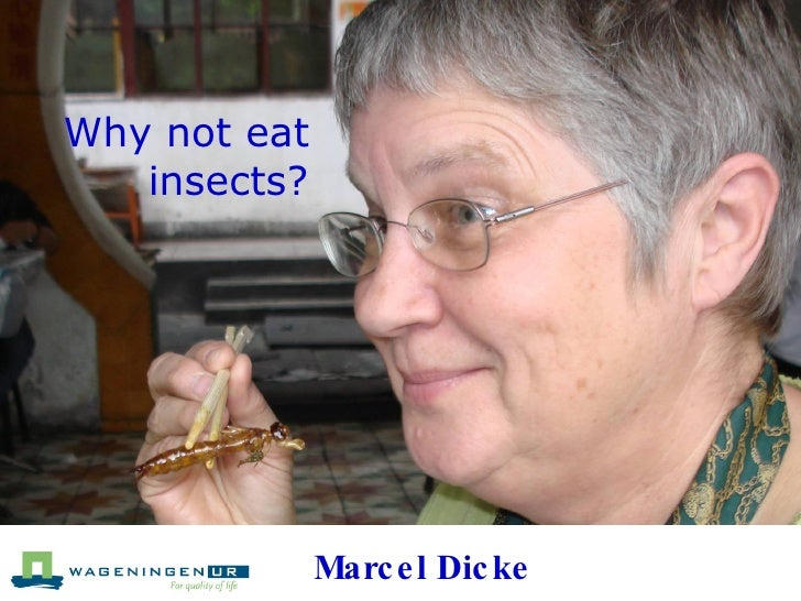 Why not eat  insects? Marcel Dicke