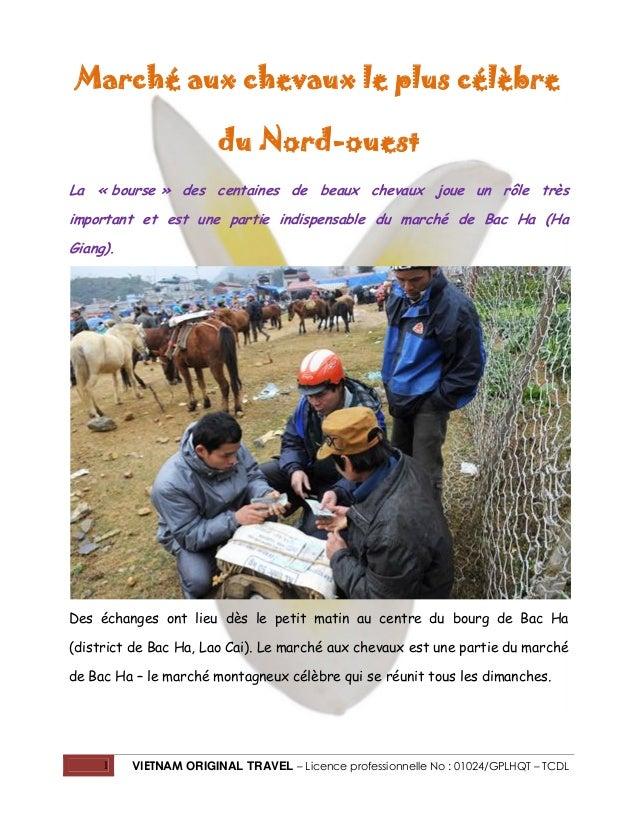 Marché aux chevaux le plus célèbre du Nord-ouest La « bourse » des centaines de beaux chevaux joue un rôle très important ...