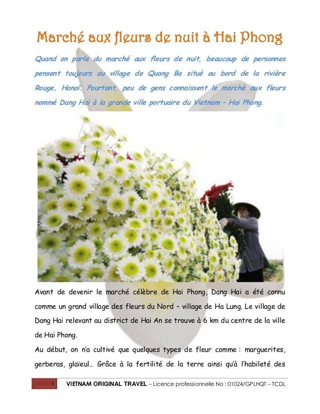 Marché aux fleurs de nuit à Hai Phong Quand on parle du marché aux fleurs de nuit, beaucoup de personnes pensent toujours ...